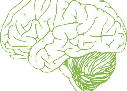 Psychobiotics Brain Health