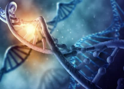 What is methylation